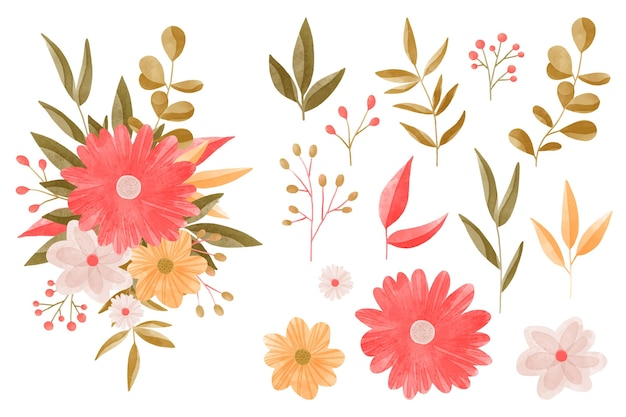Watercolor floral elements collection