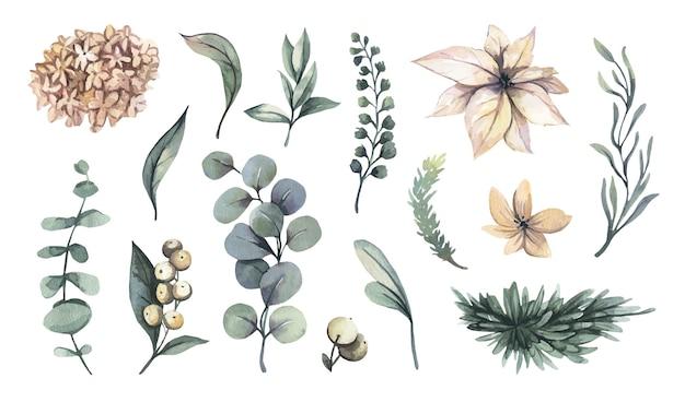 水彩花のイラスト-花のコレクション。