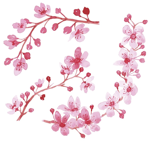 水彩花のイラスト