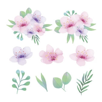 Watercolor floral ornaments with different kind of leaves