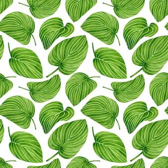 Акварельный цветочный узор с большими тропическими листьями