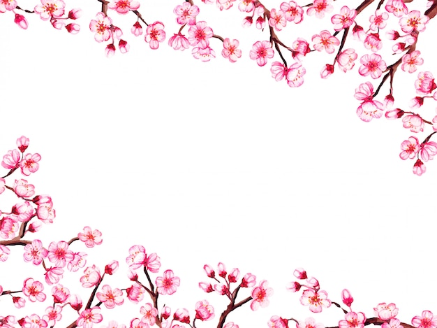 Watercolor floral sakura frame. spring cherry blossom border, isolated on white.