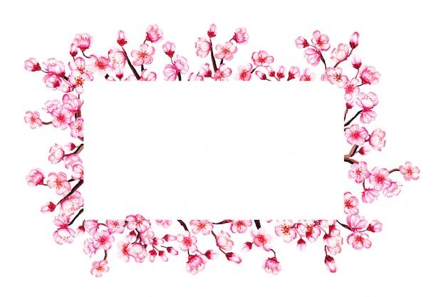 Акварель цветочная рамка сакуры. весенняя вишня, изолированная на белом