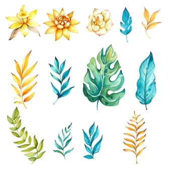 水彩花の熱帯の装飾的な要素