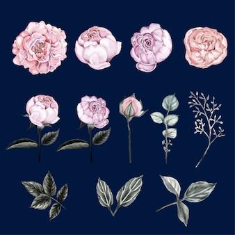 Watercolor floral vintage elements.