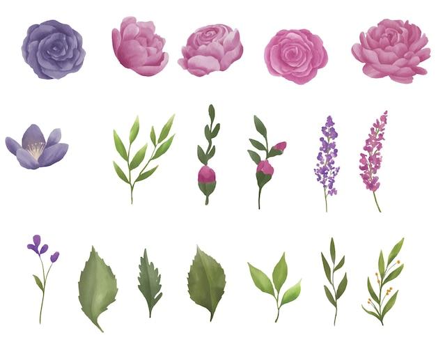 水彩花と葉の要素