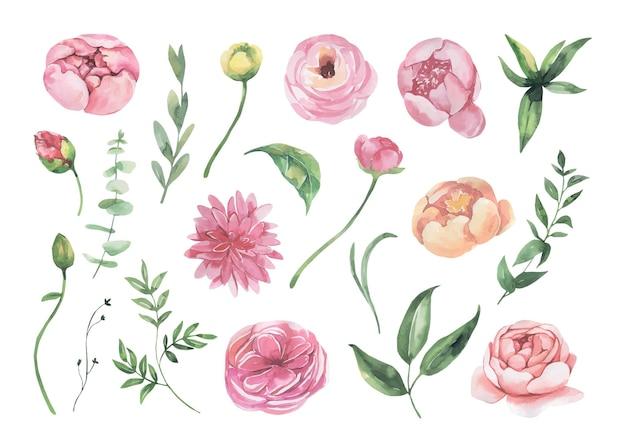 Коллекция акварельных цветов