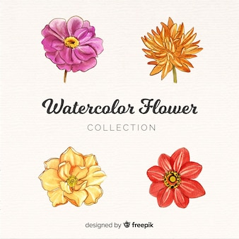Watercolor flower collection