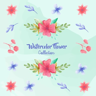 Watercolor flower collections
