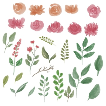 Watercolor flower and leaf elements