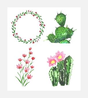 Акварельные цветы и кактус