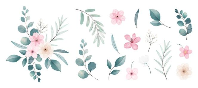 Collezione di fiori ad acquerello
