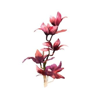 수채화 꽃 그림