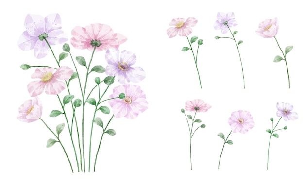 水彩花セット