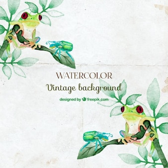 Watercolor frogs and branches background
