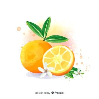 오렌지와 수채화 과일 배경