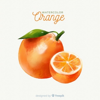 Watercolor fruit background with oranges