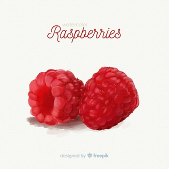 Watercolor fruit background with raspberries