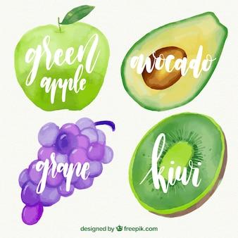 Watercolor fruit pack