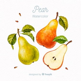 Watercolor fruits background