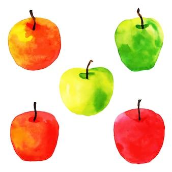 水彩フルーツコレクション