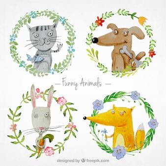 Animali divertenti acquerello