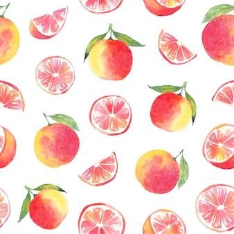 Акварельный грейпфрут бесшовный образец. ручной обращается элементы.