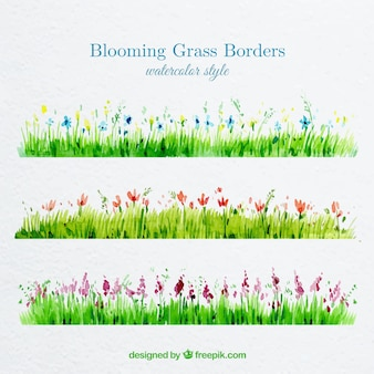 Watercolor grass borders with blooming flowers