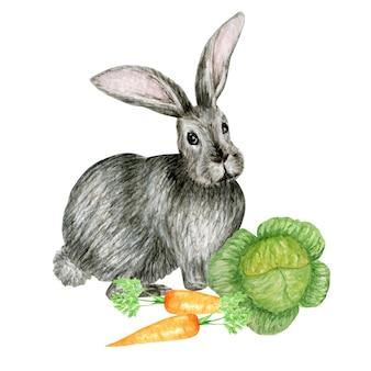 水彩の灰色のウサギのイラスト白い背景、イースターのカードに分離されたニンジンとかわいい面白いウサギ。