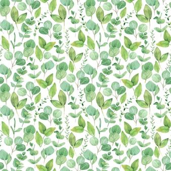 水彩画の緑の葉のシームレスなパターン、ユーカリの枝 Premiumベクター
