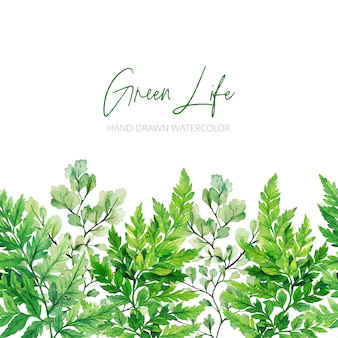 Акварельные зеленые листья, папоротники бесшовные границы
