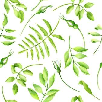 Watercolor greenery seamless pattern white floral buds and leaves illustration
