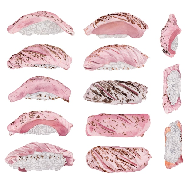 Watercolor grilled tuna sushi set