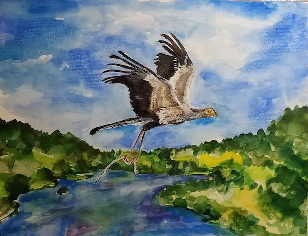 水彩手描き鳥イラスト
