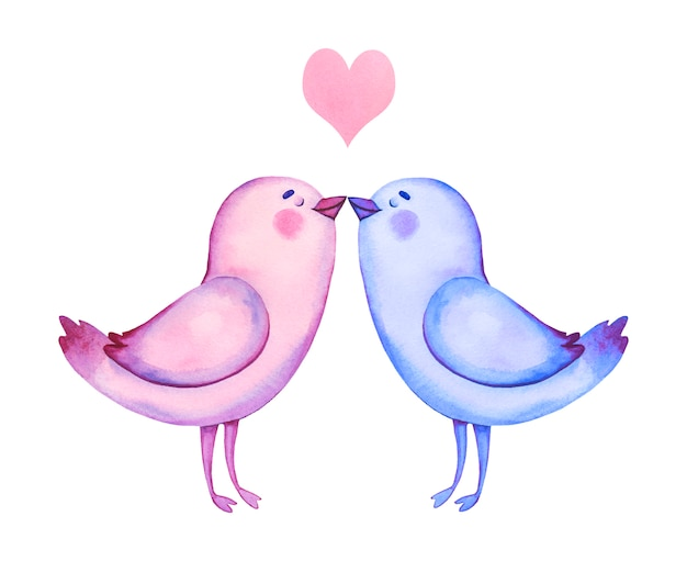 Watercolor hand drawn birds in love. valentines day clipart. cartoon birds illustration.