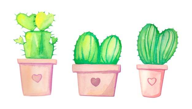 Watercolor hand drawn cactus set with pink flower pot.