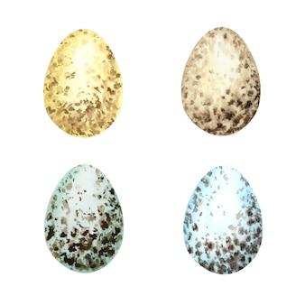 수채화 손으로 그린 부활절 달걀 세트. 다른 야생 조류 계란 흰 배경에 고립의 다채로운 컬렉션입니다.