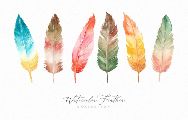 Watercolor hand drawn feathers collection