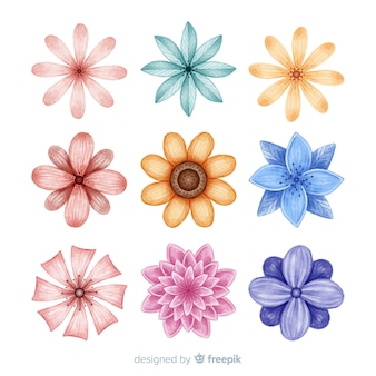 Watercolor hand drawn flower set