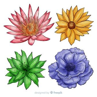 Watercolor hand drawn flower set