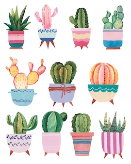 Watercolor hand-drawn illustration with cactus and succulents watercolor houseplants on white background
