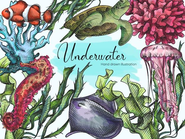 白地に青のペンで描かれた水中の生き物の水彩手描きスケッチセット。海洋生物。水族館の植物や動物。サンゴ、カメ、クラゲ、海草、ナマズ