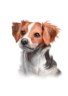 Watercolor hand painted cute dog illustration