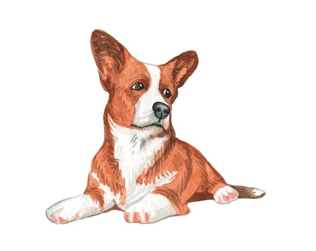 水彩手描きの犬のイラスト