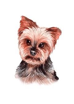 水彩手描きの犬イラスト