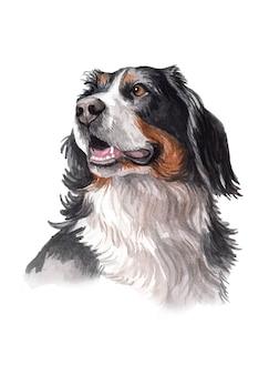 Акварельная ручная роспись иллюстрации собаки