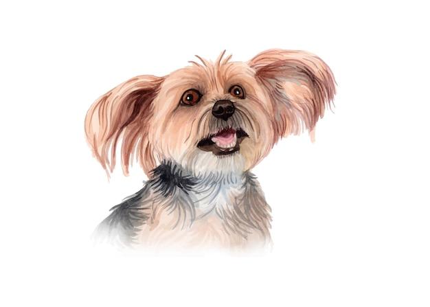 水彩の手描きの犬の肖像画