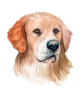 Акварельная ручная роспись собаки