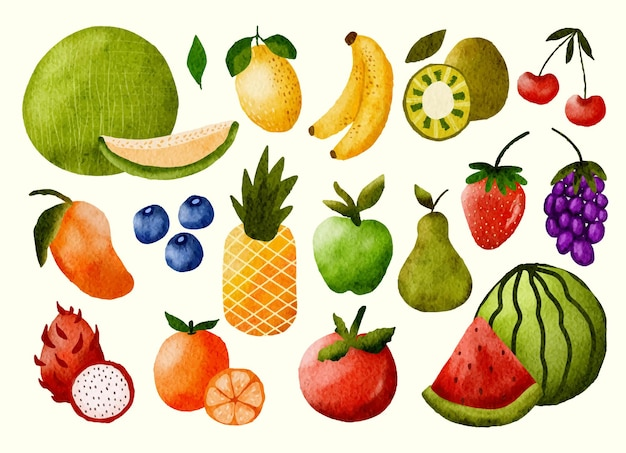 Watercolor hand painted fruits graphic object illustration collection