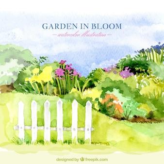 水彩手描きの庭